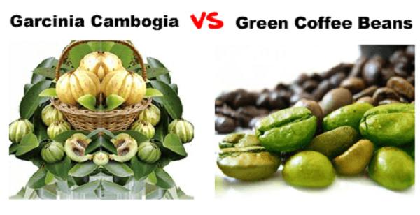 Garcinia Cambogia Vs Green Coffee Bean