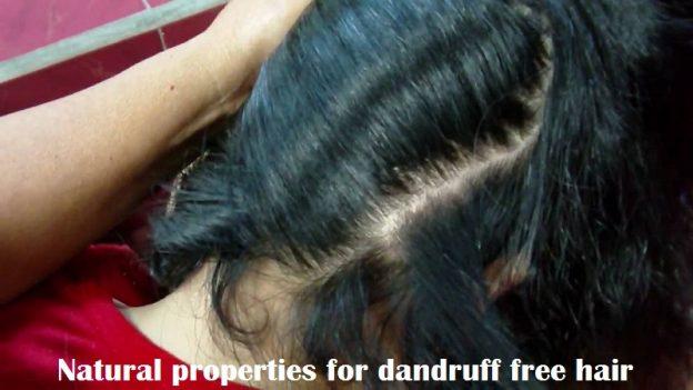 Natural properties for dandruff free hair